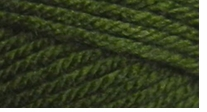 Deborah Norville Collection� Everyday� Soft Worsted Yarn Pine Green