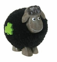 Fluffy Sheep Standing Black