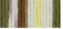 Lily Sugar'n Cream Ombre Yarn Super Size Wooded Moss