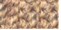 Lion Brand� Homespun� Yarn Sierra
