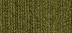Lion Brand Sock Ease Yarn Green Apple - Click to enlarge