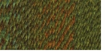 Lion Brand Tweed Stripes Yarn Ozarka Forest