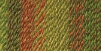 Lion Brand Tweed Stripes Yarn Rainforest