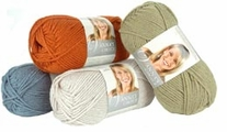 Lion Brand Vanna's Choice Yarn