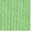 Patons Astra Yarn Hot Green