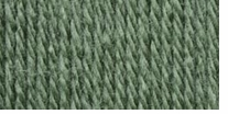 Patons® Canadiana Yarn Solids Medium Green Tea
