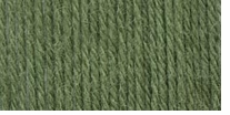 Patons® Classic Wool Dk Super Wash Yarn Green
