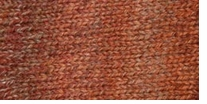 Patons Kroy Socks FX Yarn Copper Colors
