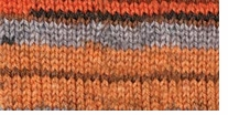 Patons Kroy Socks Yarn Burnished Sierra Stripes