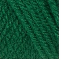 Red Heart Classic Yarn Paddy Green