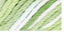 Red Heart Creme de la Cr�me Yarn Lime Ombre