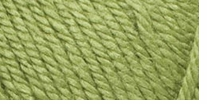 Red Heart� Soft Touch� Yarn Leaf Green
