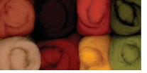 Wool Roving 12in 2 Ounces 8/Pkg Autumn