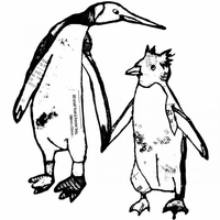 Crafty Individuals Unmounted Rubber Stamp - 2 Penguins