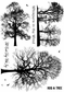 Crafty Individuals Unmounted Rubber Stamp - Winter Trees