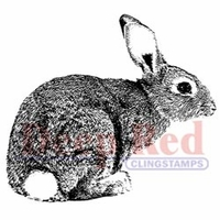 "Deep Red Stamp 2""x2"" - Bunny Rabbit"