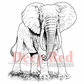 Deep Red Cling Stamp - African Elephant