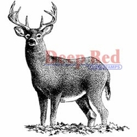 Deep Red Stamp - Buck Deer