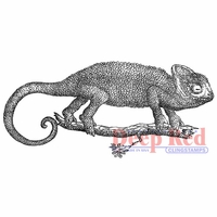 Deep Red Cling Stamp - Chameleon