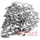 "Deep Red Cling Stamp - Maine Hayfield 3""x3"""