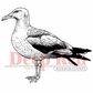 "Deep Red Stamp - Seagull 2""x2"""
