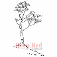 Deep Red Stamp - White Birch
