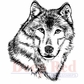 Deep Red Stamp - Wolf Portrait