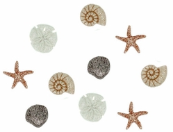 Dress It Up Embellishments - Seashells - Click to enlarge