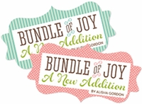 Echo Park Paper Bundle of Joy Collection