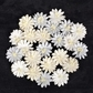 Frost Paper Flowers - Canson #1