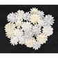 Frost Paper Flowers - Canson #2