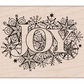 Hero Arts Mounted Rubber Stamp - Joy Burst