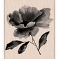 Hero Arts Mounted Rubber Stamps - Painted Flower