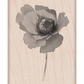 Hero Arts Mounted Rubber Stamps - Poppy In Wind