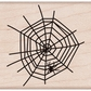 Hero Arts Mounted Rubber Stamps - Spider In Web