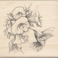 Inkadinkado Rubber Stamp w/Wood Handle - Hummingbird With Flowers