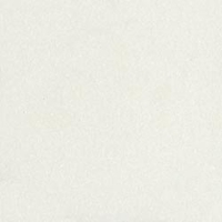 Judikins Embossing Powder - Detail Clear