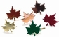 Painted Shaped Metal Paper Fasteners - Assorted Fall Leaves