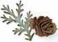 Sizzix Bigz Die by Tim Holtz - Tattered Pinecone