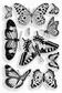 Stampendous Perfectly Clear Stamp Set - Butterflies