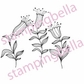 Stamping Bella Unmounted Rubber Stamp - Em's Dancing Daffodils