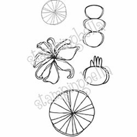 Stamping Bella Unmounted Rubber Stamp - Piecharts Have No Calories