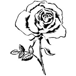 Studio 490 Mounted Red Rubber Stamp - Vintage Rose - Click to enlarge