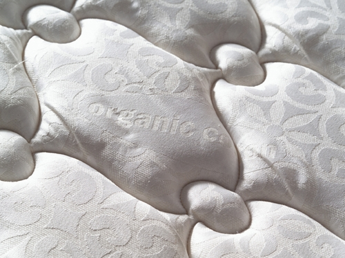 "MaxLatex 5.5"" Mattress"