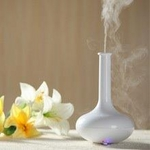"Ultrasonic Fragrance Diffuser/Humidifier<br><font name=""Arial"" color=""#EE0000""size=2>"