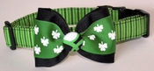 <center> Dandy and Dashing St. Patrick's Boy Dog Collar </center>