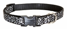 "Lupine® 3/4""  Adjustable Dog Collar"
