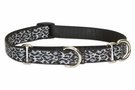 "Lupine® 3/4""  Dog Combo Collar"