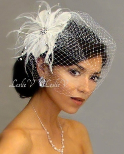 * Rhinestone Brooch Feather & Birdcage Veil 21-F31t