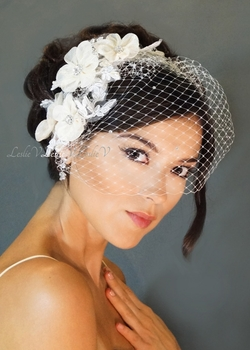 Two Floret Rhinestone Lace Hair Combs & Petite Birdcage Veil 27-117(2)